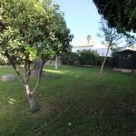 villa-in-javea-in-the-montgo-area_spain_1172